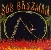 Bob Brozman: Devil's Slide (Rounder CD 11557)